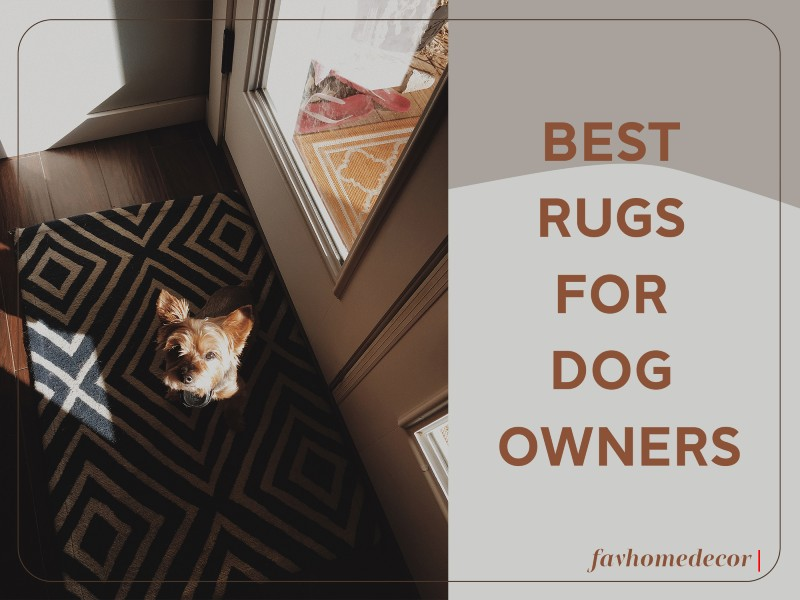 Best Rugs For Dog Owners