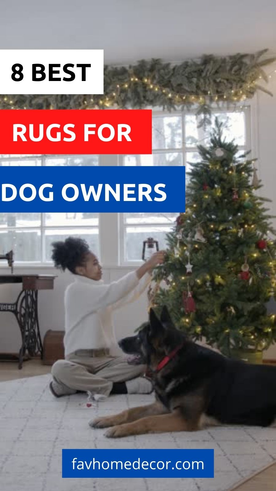 8 Awesome Rug For Dog Owners
